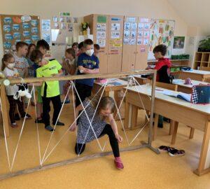 pajkova mreža 2